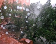 Raining Orbs I Planki Runes Sedona Arizona - Brenda Zyburt | Journey Of The Soul, Healing with Our Celestial Angelic Guides