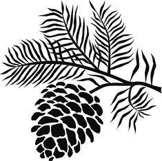18++ Pine cone clipart black and white info