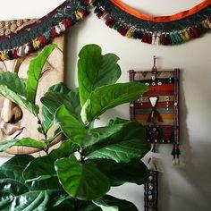 boho corner - happy earth day - apartmentf15