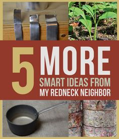 Who knew quirky neighbors could be so helpful? Read these 5 smart tips from my redneck neighbor and see survival skills put to work!