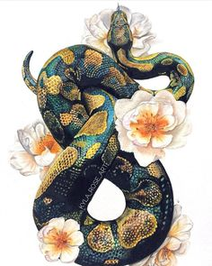 Ball python and Roses print This is a print of my original colour pencil drawing This print was my first design and one of my favourite pieces I have done A great and unique gift or just a beautiful piece of wall art for any room to treat yourself - # Snake Painting, Snake Drawing, Snake Art, Python Drawing, Snake Sketch, Colour Drawing, Tiger Drawing, Art Inspo, Inspiration Art