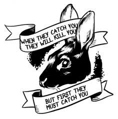 Run, rabbit, run. (Emeril @ Sarnai. He calls Sarnai rabbit a lot, starting when he sees her nose twitch when she's mad.)