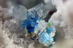 Guanacoite. El Guanaco Mine, Guanaco, Santa Catalina, Provinz Antofagasta, II. Region, Chili Taille=1.04 mm Collection Domenico Preite / Photo Matteo Chinellato