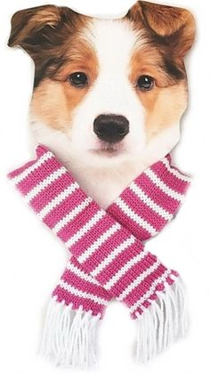 Candy Striped Knit Scarf for Dogs Color Pink/White