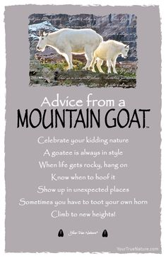 Each postcard says: Advice from a Mountain Goat Celebrate your kidding nature A goatee is always in style When life gets rocky, hang on Know when to hoof it Sho Spirit Animal Totem, Animal Spirit Guides, Animal Totems, Advice Quotes, Life Advice, Advice Cards, Animal Medicine, Pomes, Power Animal