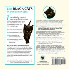 Read what NY Times best-selling authors say about Black Cats Tell All: True Tales And Inspiring Images. On sale now with FREE U. Fluffy Kittens, Cats And Kittens, Cats 101, Black Cat Appreciation Day, Owning A Cat, All About Cats, Pet Life, Pretty Cats, Cat Food