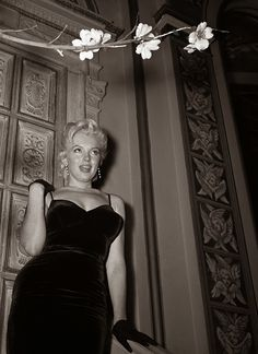 Marilyn Monroe & Laurence Olivier at a Press Conference at the Plaza Hotel, 1956 | Historical Pictures