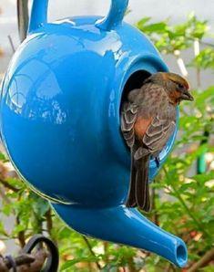 Ten Amazing Bird Houses All Made From Upcycling and Recycling Homemade Bird Houses, Bird Houses Diy, Decorative Bird Houses, Teapot Birdhouse, Genius Ideas, Bluebird House, Bird Boxes, Ideas Geniales, Yard Art