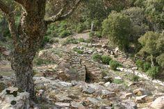 Nuragic well  temple (Vallermosa - Italy)