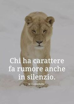 Peace Quotes, Words Quotes, Lion And Lioness, Motivational Quotes, Inspirational Quotes, Italian Quotes, Savage Quotes, Today Quotes, Photo Quotes