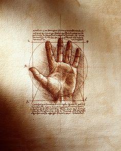 Leonardo Da Vinci, hand proportions study via IronLight…