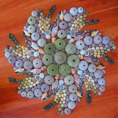 SHELL ART: A how-to is not provided but a picture is worth a thousand words. Sea Crafts, Sea Glass Crafts, Diy And Crafts, Arts And Crafts, Sea Urchin Shell, Sea Shells, Sea Urchins, Seashell Art, Seashell Crafts
