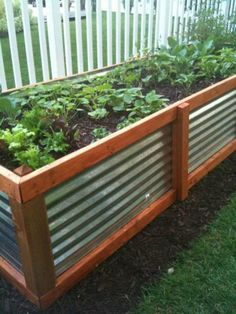 Raised bed built out of galvanized sheet and wood