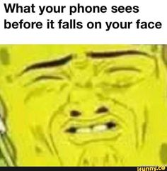 """Silly Memes To Help Pass The Time - Funny memes that """"GET IT"""" and want you to too. Get the latest funniest memes and keep up what is going on in the meme-o-sphere. 9gag Funny, Funny Spongebob Memes, Super Funny Memes, Funny Animal Jokes, Silly Memes, Crazy Funny Memes, Really Funny Memes, Stupid Memes, Funny Tweets"""