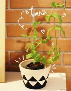 Vaso de planta decorado super fofo.