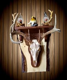 Whitetail Deer Skull Wall Mount European Style Rustic Walnut Wall Shelf Home Cabin Handcrafted Gift Deer Mount Decor, Antler Mount, Deer Decor, Deer Antler Crafts, Antler Art, Deer Hunting Decor, Hunting Stuff, Camo Rooms, Taxidermy Display