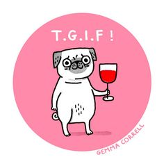 Happy Friday, Mr. Pug!