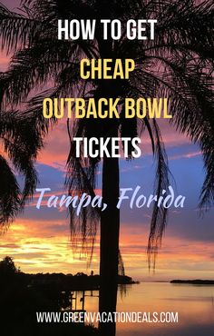 How to get cheap tickets to the Outback Bowl in Tampa Florida so you can watch the South Carolina Gamecocks and Michigan Wolverines play. Great deal on college football bowl game tickets. University of South Carolina Football | University of Michigan Football | Outback Bowl Tickets for Sale | College Football Games #OutbackBowl #Wolverines #Gamecocks #Tampa