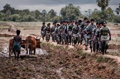 Tamil Tigers on march, Sri Lanka, by Steve McCurry Namaste, Steve Mccurry Portraits, Nepal, Ex Yougoslavie, Les Philippines, Story Of The World, Opposites Attract, Magnum Photos, Photojournalism