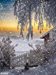 A wonderful winter. Winter Szenen, Winter Fairy, Winter Magic, Winter Garden, Winter Wonderland Christmas, Winter Christmas, Winter Pictures, Christmas Pictures, Beautiful Winter Scenes