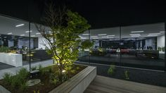 Pergola, Plants, Indoor Courtyard, Sun Sails, Solar Shades, Architecture, Lawn And Garden, Outdoor Pergola, Plant