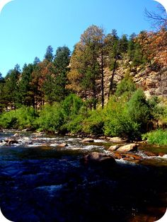 I went fly fishing on the Big Thompson in Estes Park, Co.   *My personal picture