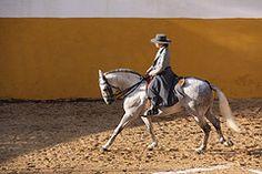 Mário Vinhas, Herdade do Zambujal, Portugal   MG_1489 (RPG PHOTOGRAPHY) Tags: mario vinhas