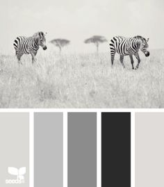 Achromatic color scheme - my current favorite, hueless
