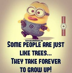funny shirts For all Minions fans this is your lucky day, we have collected some latest fresh insanely hilarious Collection of Minions memes and Funny picturess Mom Jokes, Best Funny Jokes, Funny Texts, Funny Pics, Funny Stuff, Funny Shit, Hilarious Quotes, Epic Texts, Funny Sayings