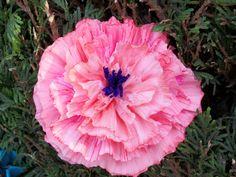Bloemen voor het stand van crepe en beschilderd