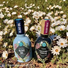 Celebrating the first day of spring with some local beauties and of course flowers.... Get the twins from Namaqua Olives & Olive Oils . Contact: info@namolives.co.za . . Reposted from @charmaineavenant New kids on the block?  Yup the Twins are here.  . . . . #visitnwc #discoverctwc #weskus #visitsawinelands #thisissouthafrica #instagram_sa @weskustourism @discoverctwc @visitsawinelands #weskusflowers2020 #vredendal #oliveoil #olivelove First Day Of Spring, Olive Oils, One Day, New Kids, Olives, Vodka Bottle, Yup, Twins, Coast