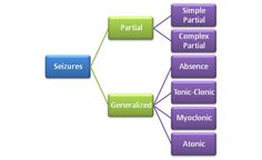 Seizures are broadly classified into two main groups as either partial or generalized based on the region of onse