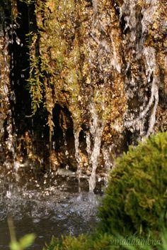 water by vindadamona