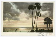 Sunset on the St. John's River, Florida