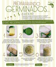 como hacer germinados!