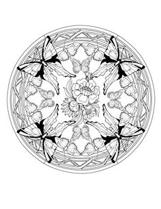animal mandala coloring pages butterfly mandala coloring page animal jr