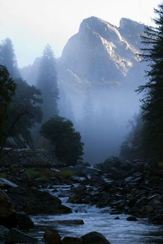 Watching sunlight brush the mountain tops - Merced River morning, near Yosemite Beautiful World, Beautiful Places, Merced River, Sea To Shining Sea, Adventure Is Out There, Oh The Places You'll Go, Amazing Nature, The Great Outdoors, Mists