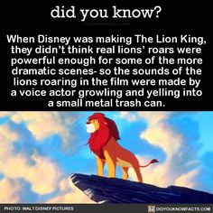 When Disney was making The Lion King, they didn't think real lions' roars were powerful enough for some of the more dramatic scenes- so the sounds of the lions roaring in the film were made by a voice actor growling and yelling into a small metal...