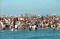 Bain rituel dans la mer aux Saintes-Maries - Saintes-Maries-de-la-Mer - Wikipedia, the free encyclopedia