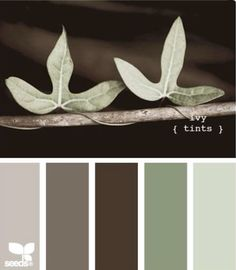 """Ivy Tints"" Palette by Design Seeds Design Seeds, Paint Schemes, Colour Schemes, Color Combos, Colour Palettes, Color Concept, Palette Design, Color Palate, Sage Color Palette"