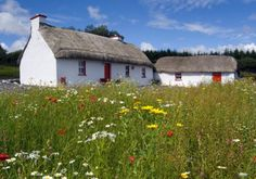 Thatched cottage in Donegal, Ireland. Awesome restoration project, too! Irish Cottage, Old Cottage, Cottage Homes, Thatched Roof, Ireland Travel, Galway Ireland, Cork Ireland, Ireland Vacation, Irish Traditions