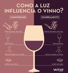 Umidade, luminosidade, chuva e muitos outros fatores determinam o sabor e qualidade de um vinho. Aos poucos você vai descobrir todos eles. #wine #vinho #curiosidade