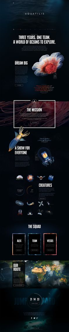 Cool layout and design. Aquatilis Expedition by Tobias van Schneider, via Behance Layout Design, Interaktives Design, Web Layout, Page Design, Flat Design, Interface Design, Interface Web, Web Design Blog, Web Design Mobile