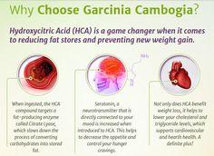 Garcinia cambogia ventas en bogota image 1