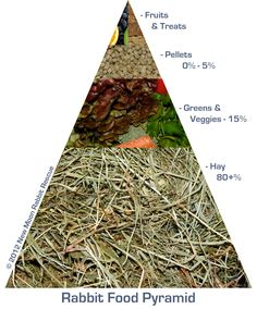 This is what a Rabbit Food Pyramid should look like! Feed them right for a long healthy life!