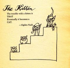 A Cat-Hater's Handbook: Irreverent Vintage Gem Illustrated by Tomi Ungerer – Brain Pickings