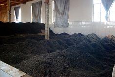 Fermentation of puerh <span class='translation'>(Pu Er tea)</span> (Wo Due) in Yunnan, Kucong Cha Chang, Pu'er
