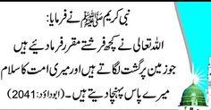 Best Islamic Quotes, Hadith, Religion, Spirituality, Arabic Calligraphy, Sayings, Corner Bookshelves, Muhammad, Allah