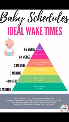 Breastfeeding is the best for your baby. But as the child's development progresses too … – Baby Development Tips Awake Times For Babies, Baby Schlafplan, Baby Sleep Schedule, Feeding Schedule For Baby, Schedule For Newborn, Baby Wise Schedule, 5 Month Old Schedule, Baby Checklist Newborn, Bedtime Routine Baby