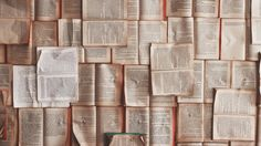 I studied literature at Bennington College. There, I wrote my thesis on the past, present, and future of the book object. Five years later, I'm still f...